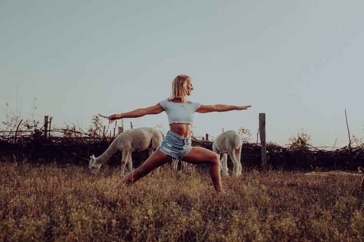 Alpaka Yoga